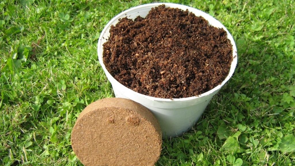 Кокосовый субстрат в брикете: для чего он нужен, и как его использовать